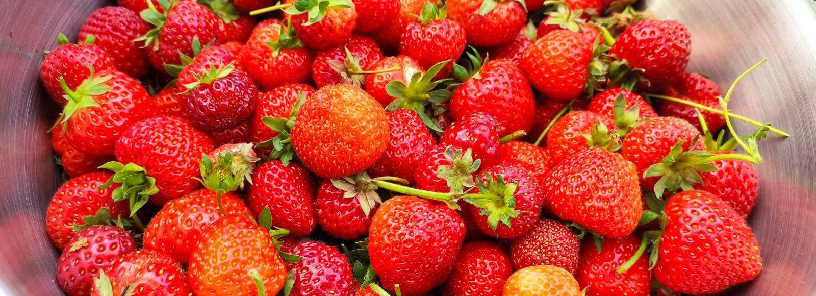 Erdbeermarmelade selber machen